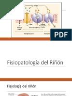 Fisiología Del Riñon