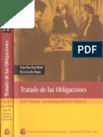 Tratado Obligaciones t.11
