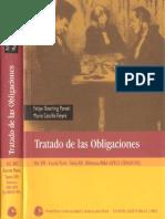 Tratado Obligaciones t.13