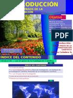 investigacionen10pasos-intro-120722222042-phpapp01.pptx