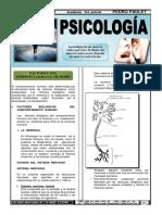 14 Psicologia