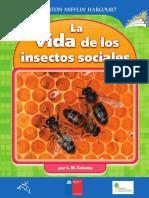 La Vida de Clos Insectos