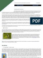 La Oropéndola 100% sostenible AVES nº1 (1.1)
