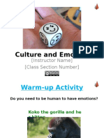 Culture and Emotion.ppt