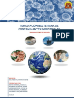 REMEDIACIÓN BACTERIANA - UNICA