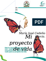 modelodemiproyectodevidamajo-130926213853-phpapp01.ppt