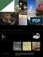 Worsek Envisioning for MLG 19aug16.pdf