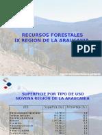RECURSOS FORESTALES REGION ARAUCANIA.ppt