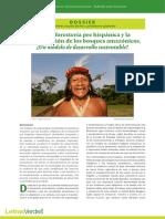 Agroforesteria Prehispanica Bosques Amazonicos