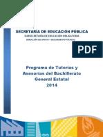 Programa de Tutorias y Asesorias BGE 2014