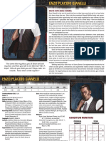 Shadowrun 5E Seattle Sprawl Digital Box Character Cards