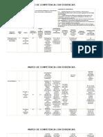 Mapeo Competencia Profesional.formato