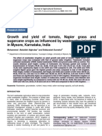 Growth and yield of tomato, Napier grass and sugarcane crops as influenced by wastewater irrigation in Mysore, Karnataka, India