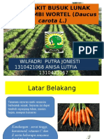 PENYAKIT BUSUK LUNAK PADA UMBI WORTEL (.pptx