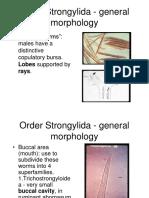 lecture_16.pdf