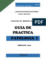 Guia Pract Pato i - 2016