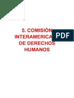 5. Comisón Interamericana de Derecchos Humanos