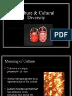 Culture & Cultural Diversity