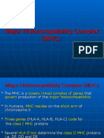 MHC and Graft Rejection Modified