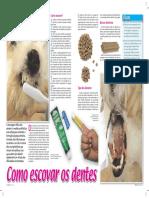 como-escovar-os-dentes.pdf