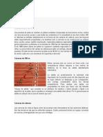ATLETISMO tercero.docx