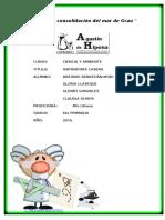 Proyecto Ciencia Sebastian 2016