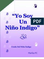 Yo Soy Un  Niño Indigo