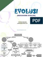 Evolusi 4