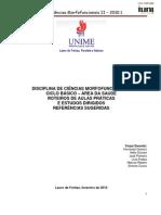 Roteiro De Aulas Práticas - Ciências Morfofuncionais II - UNIME