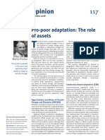 2008 - Pro-poor Adaptation - The Role of Assets