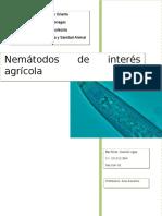 Principales Fitonematodos
