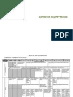 Matriz de Competencias y Capacidades Dcn
