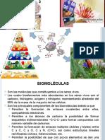 BIOMOLCULAS