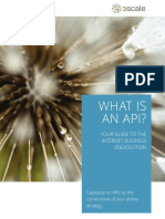 What-is-an-API-1.0.pdf