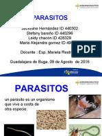 DIAPOSITIVAS PARASITOS.ppt