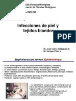 BIOL252 Clase 9-Infecciones de Piel y Tejidos Blandos