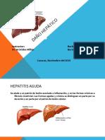Daño Hepático2-1.pdf