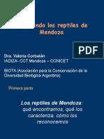 Reptiles Mendoza 2015
