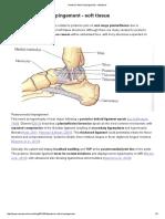 Posterior Ankle Impingement - soft tissue — Rayner & Smale.pdf