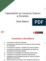 2_NivelBasico.pdf