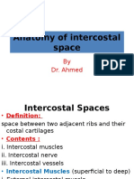 Anatomy of the Intercostal Space