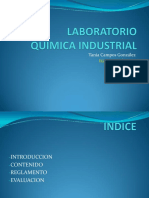 PresentacionQI(Laboratorio)2017 1 (1)
