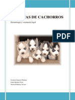 criadero.pdf