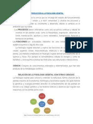 Introducción A La Fisiología Vegetal Hector 1 Citoplasma