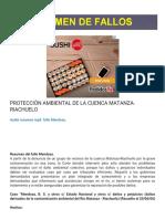 Resumen de Fallos Protección Ambiental de La Cuenca Matanza-riachuelo