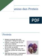 Asam Amino Dan Protein new
