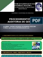 Auditoria Cap.vii