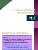 Escala Wechsler WISC IV Paty
