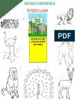 La Zoo Printat a3