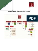 Communication on Progress - OnGC 2013
